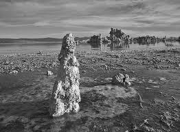 Los Ayuntamientos no se convertirán en estatuas de sal, como le ocurrió a la mujer de Lot, que miró atrás.